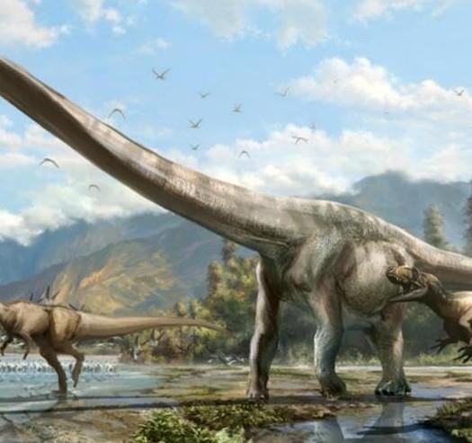 DragonDinosaur